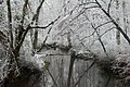Early season snow over Abrams Creek, Cades Cove--Erin Sullivan, 11 12 19 (49070110103).jpg