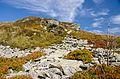 East Carpathians Biosphere Reserve, Poland Slovakia Ukraine (9).jpg
