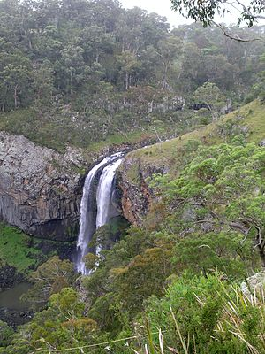 Ebor Falls - Lower Ebor Falls.