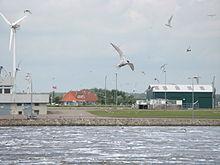 Environmental impact of wind power - Wikipedia