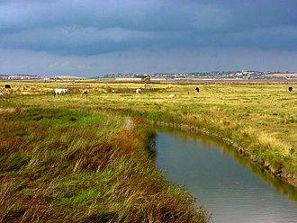 Islands in the River Thames - Sheppey - Minster from Elmley Marshes