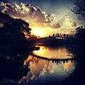 Entardecer no Parque Ibirapuera.jpg