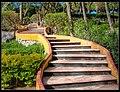 Escaleras En El Cerro De Las Campanas Querétaro (213733097).jpeg