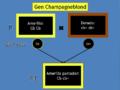 Esquema Gen Champagneblond1.png