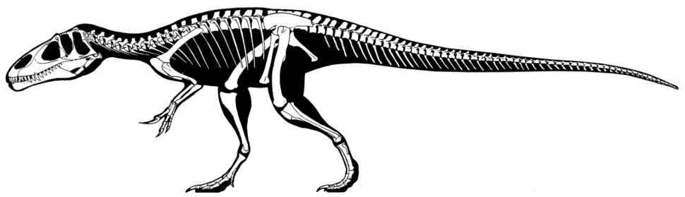 Eustreptospondylus oxoniensis skeleton
