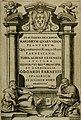 Exactissima descriptio rariorum quarundam plantarum, que continentur Rome in Horto Farnesiano (1625) (14590095437).jpg