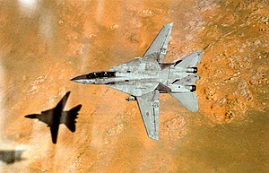 F-14A VF-41 over the Saudi desert 1991.JPEG