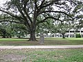 FDR Mall City Park NOLA June 2011 K.JPG