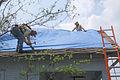 FEMA - 16042 - Photograph by Win Henderson taken on 09-19-2005 in Louisiana.jpg