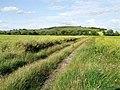 Farm Track, Old Bolingbroke - geograph.org.uk - 479388.jpg