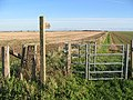 Farmland at TA002513 - geograph.org.uk - 82196.jpg