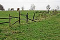 Fence to a paddock north of Leek Wootton - geograph.org.uk - 1572476.jpg