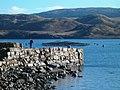 Fishing off Crarae Pier - geograph.org.uk - 119351.jpg