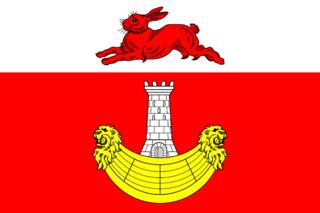 Флаг Янегского сельского поселения