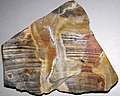 Flint (Vanport Flint, Middle Pennsylvanian; Nethers Flint Quarries, Flint Ridge, Ohio, USA) 197.jpg