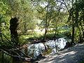 Fluss Wandse im Eichtalpark.JPG