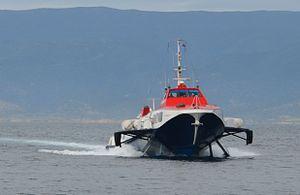 Flying Dolphin XVII moyen.jpg