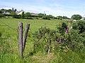Foffenagh Townland - geograph.org.uk - 1368395.jpg