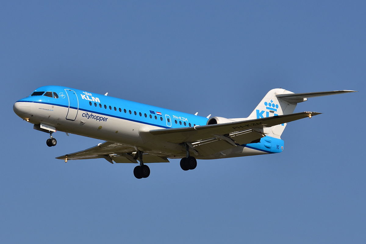 Klm Flying With Cats To The Uk