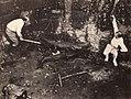 Fool's Paradise (1921) - 3.jpg