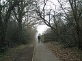 Footpath through to North Road - geograph.org.uk - 699422.jpg