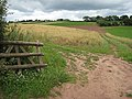 Footpath to Linton ridge - geograph.org.uk - 915771.jpg