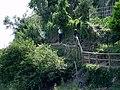 Footpath to Vernazza - panoramio - Frans-Banja Mulder.jpg