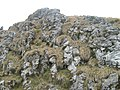 Formaţiuni în Munţii Latoriţei - panoramio.jpg