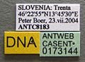 Formica truncorum casent0173144 label 1.jpg