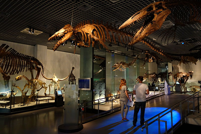 National Museum of Nature and Science - tokyo
