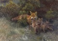 Fox with Cubs (Bruno Liljefors) - Nationalmuseum - 23476.tif