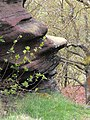 Froggatt Edge - a face in the rock - geograph.org.uk - 1280273.jpg