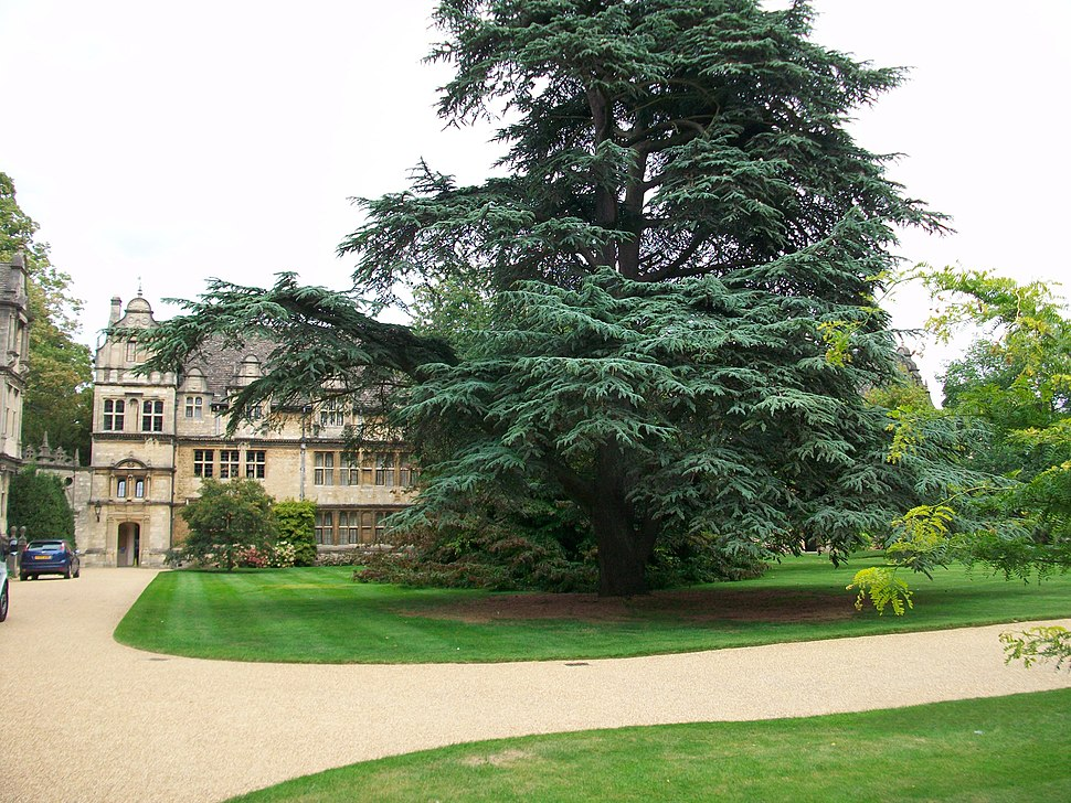 Front Quad, Trinity College, Oxford