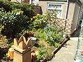 Garden and chimney pot - DSC06780.JPG