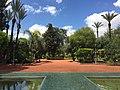 Garden in Marrakesh 2.jpeg