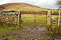 Gate on Bridleway 14 - geograph.org.uk - 881509.jpg