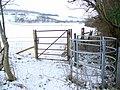 Gates, Croucheston - geograph.org.uk - 1654398.jpg