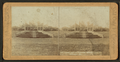 Gates Ajar in flowers, Washington Park, Chicago, Ill, from Robert N. Dennis collection of stereoscopic views.png