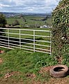 Gateway above Coffinswell - geograph.org.uk - 763566.jpg