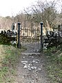 Gateway to Selkirk Hill - geograph.org.uk - 1194674.jpg