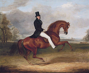 George Stanhope, 6th Earl of Chesterfield - George Augustus Frederick, 6th Earl of Chesterfield, on his favourite hack by Sir Hercules