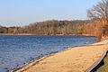 Gfp-wisconsin-pike-lake-state-park-lake-shore.jpg