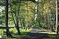 Gmina Grodzisk Mazowiecki, Poland - panoramio (10).jpg