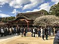 "Gohonden and plum tree ""Tobiume"" of Dazaifu Temman Shrine.jpg"
