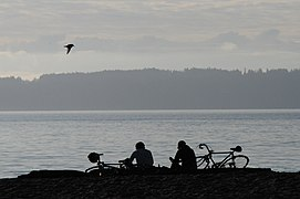 Golden Gardens cyclists silhouette 01.jpg