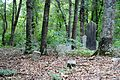 Gospel Pilgrim Cemetery, photographer facing SW2.JPG