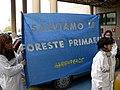 Greenpeace-Campagna-Foreste-Italia-2006.jpg