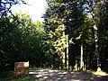 Guéret - forêt de Chabrières (01).jpg