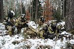 HHC 2-503rd IN, 173rd AB Mortar mission 170128-A-BS310-087.jpg