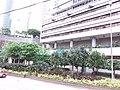 HK 香港 Admiralty 金鐘道 Queensway October 2018 SSG High Court building n trees.jpg